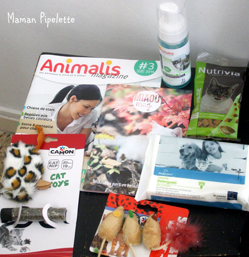 Miaoubox animalis