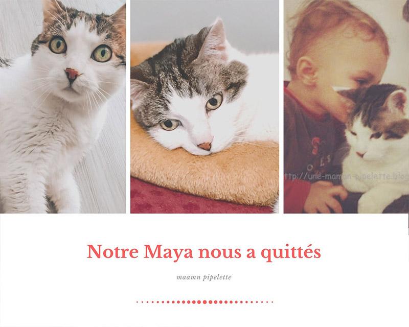 Notre chat Maya nous a quittés